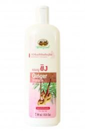 Имбирный шампунь для жирных волос Абхай. Abhaibhubejhr Ginger Shampoo.