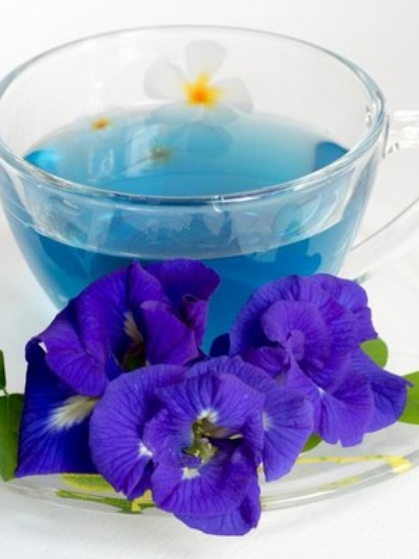 тайский синий чай в москве